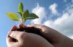 Что такое экологические изыскания и какова их роль в строительстве?
